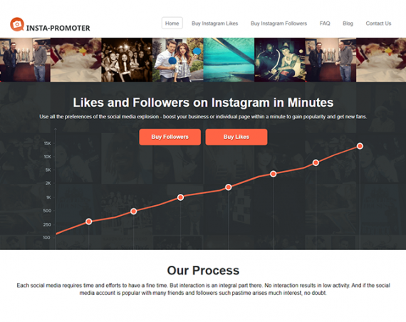 Insta Promoter Review and Alternatives